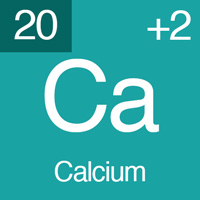 normal electrolyte levels Calcium.