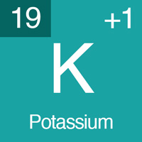 normal electrolyte levels Potassium.
