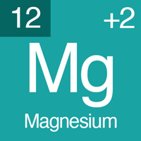 normal electrolyte levels Magnesium.