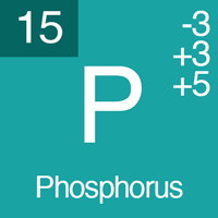 normal electrolyte levels phosphorus
